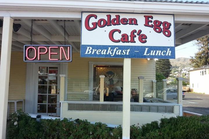 Pet Friendly Golden Egg
