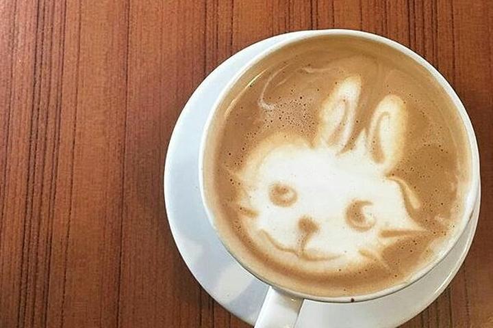 Pet Friendly Felicitous Coffee