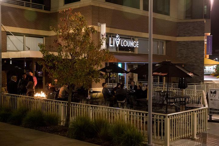 Pet Friendly Liv Lounge
