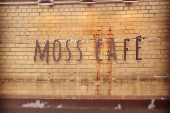 Pet Friendly Moss Cafe