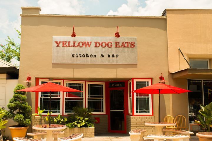 Pet Friendly Yellow Dog Eats