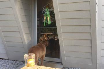 Pet Friendly Grateful Brew