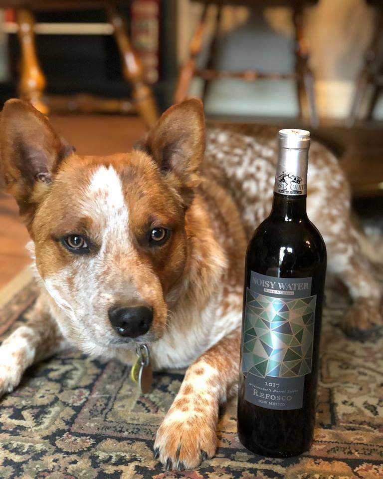 Noisy Water is a pet-friendly winery with a lovely patio for your dog.