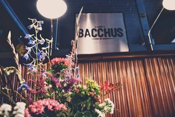 Pet Friendly Bacchus