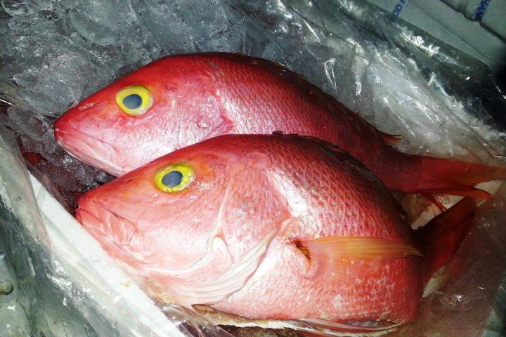 Pet Friendly Hesh's Seafood