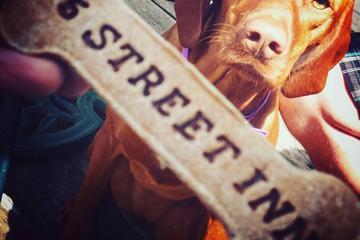 Pet Friendly 75th Street Inn