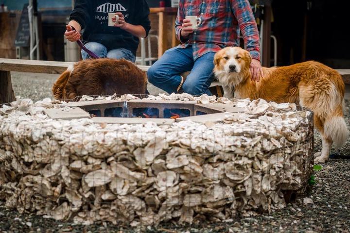Pet Friendly Hama Hama Oyster Saloon