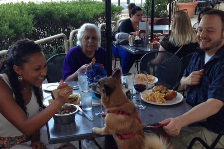 Dog Friendly Restaurants In Atlantic City Nj Bring Fido