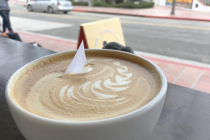 Pet Friendly Bear Coast Coffee