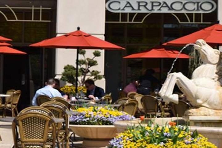 Pet Friendly Carpaccio Tuscan Grille