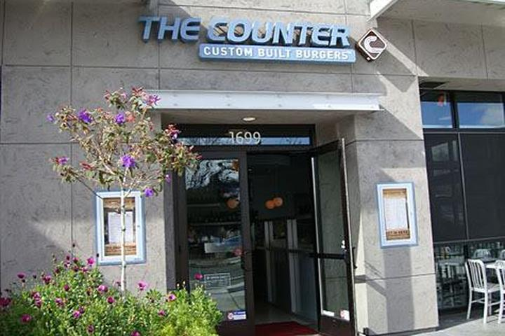 Pet Friendly The Counter