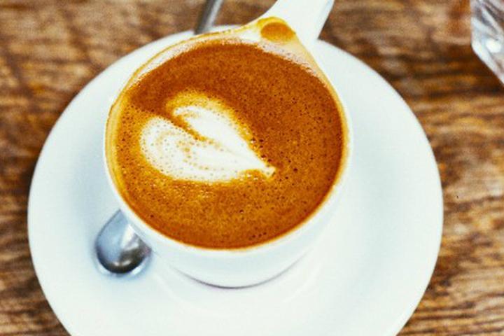 Pet Friendly Organic Beans Coffee Company