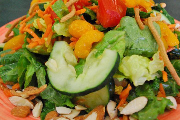 Pet Friendly Salad Express
