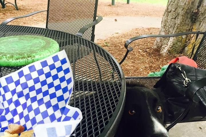 Dog Friendly Restaurants in Spokane, WA - Bring Fido