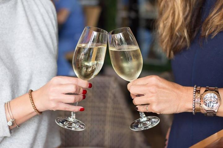 Pet Friendly City Cellar Wine Bar & Grill