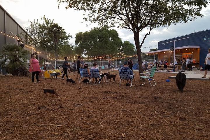 Pet Friendly Yard Bar
