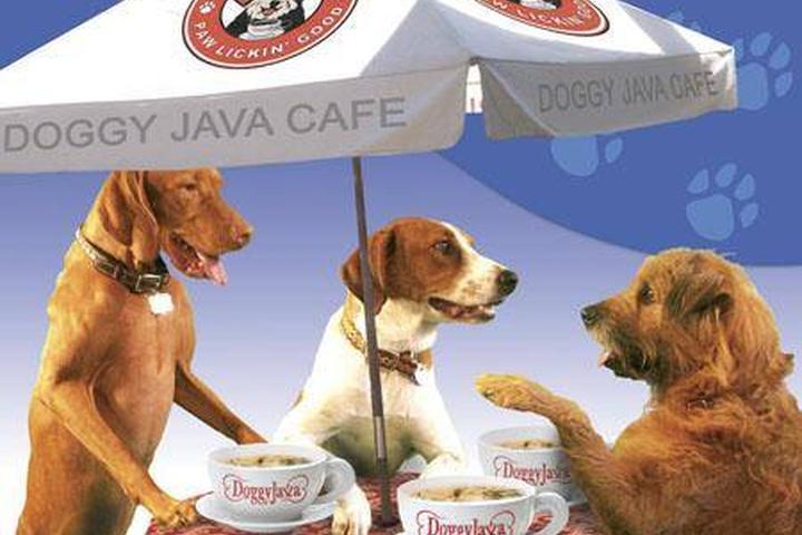 Pet Friendly Main Street Cafe