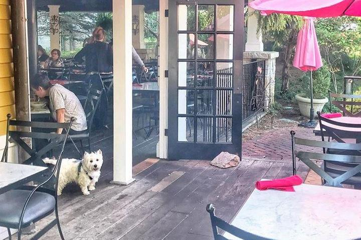 Pet Friendly Village Anchor