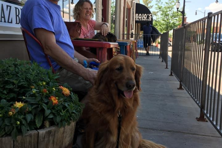 Pet Friendly RelicRoad Brewing Company