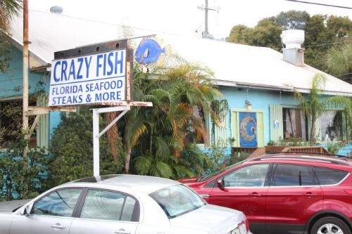 Crazy fish bar grill is dog friendly for Crazy fish restaurant