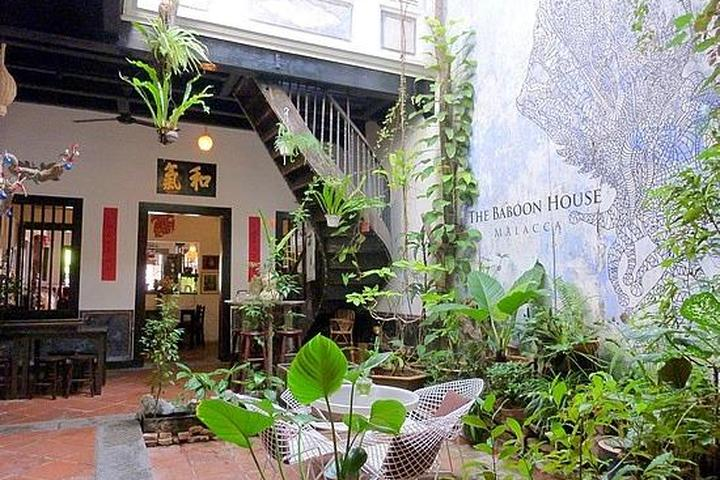 Pet Friendly The Baboon House