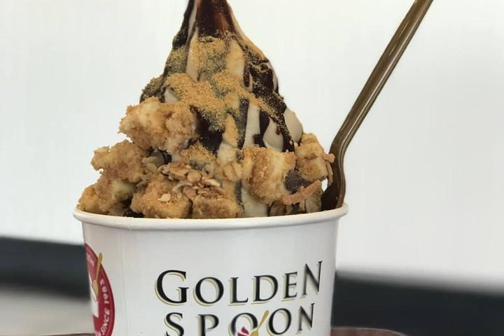 Pet Friendly Golden Spoon Frozen Yogurt