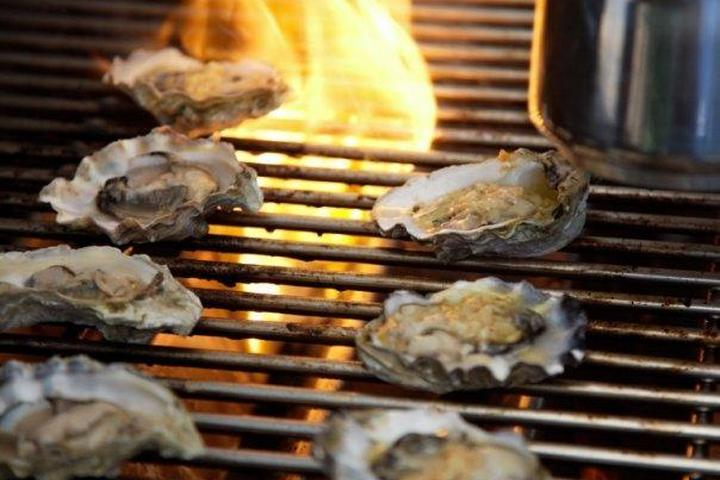 Pet Friendly Half Shell Oyster House
