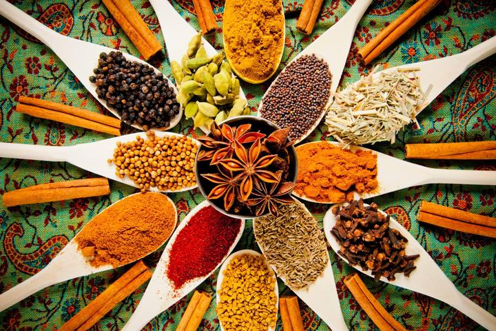Pet Friendly Tarka Indian Kitchen