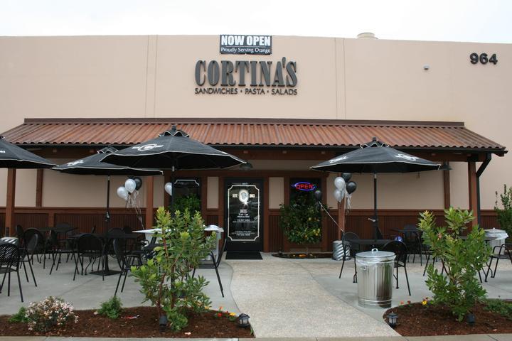 Pet Friendly Cortina's- Orange