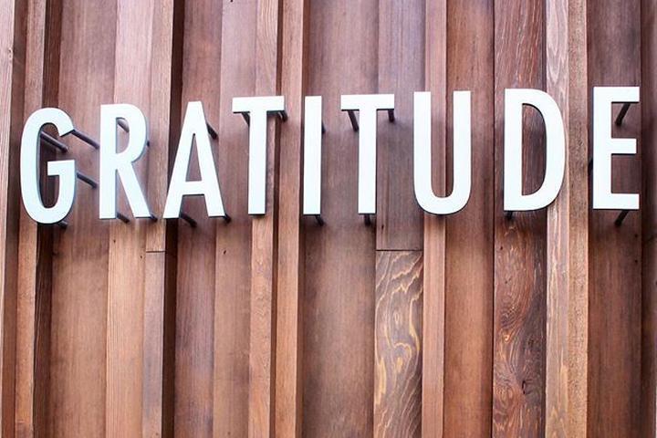 Pet Friendly Cafe Gratitude