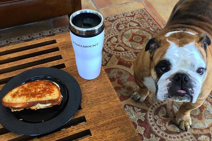 Dog Friendly Restaurants In Cheyenne Wy Bring Fido