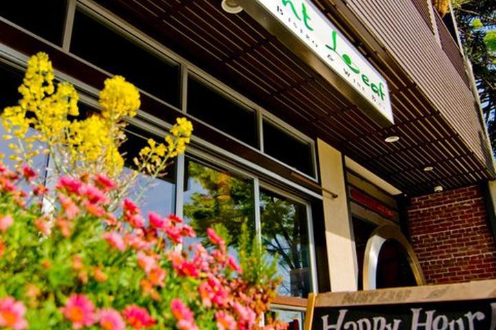 Pet Friendly Mint Leaf Restaurant