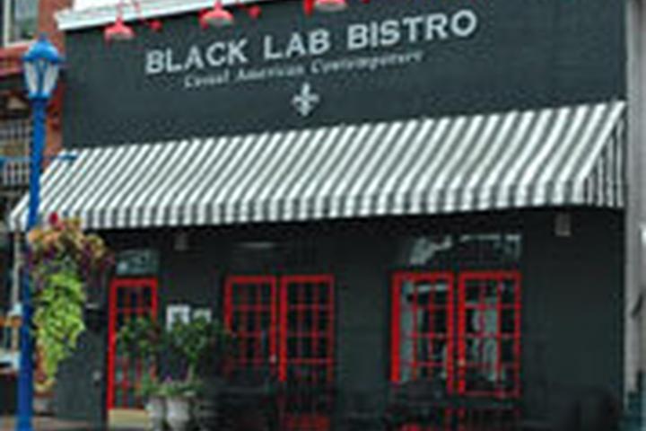 Pet Friendly Black Lab Bistro