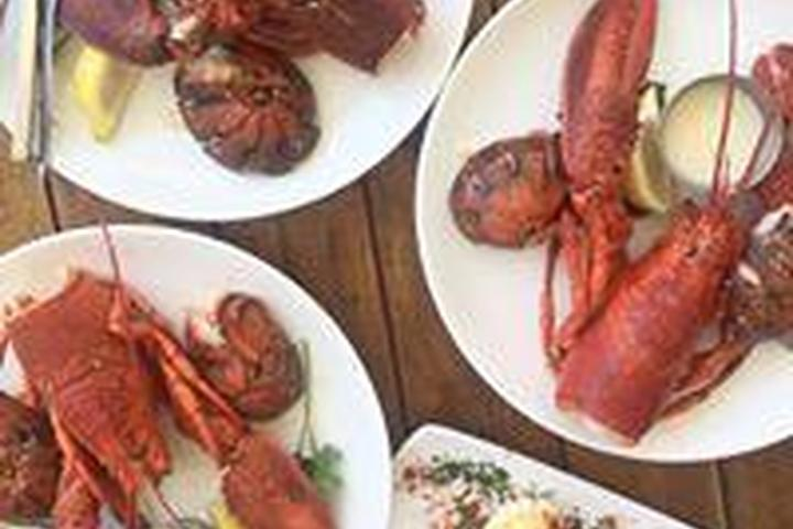 Pet Friendly Ways & Means Oyster House