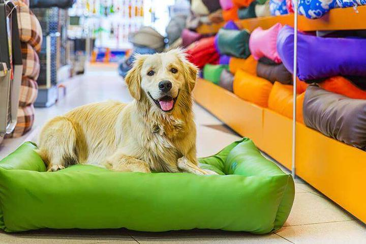 Pet Friendly Petland