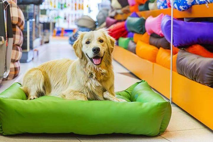 Pet Friendly Tomlinson's Feed- Lakeway
